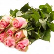 Stock Photo: Pink roses isolated on white background