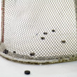 Stock Photo: Hockey net