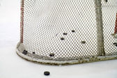Hockey net — Stock Photo