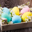 Easter eggs with spring flower on wooden background — Stock Photo