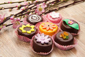 Variety of cassate sicily dessert  with spring flower — Stock Photo