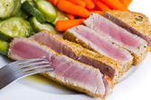 Tuna fillet with vegetables — Stock Photo