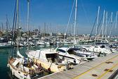 Cattolica harbour in emilia romagna — Zdjęcie stockowe