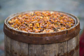 Old barrel filled with amber — Stock Photo