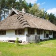 Old rural house with thatched roof — Stock Photo #48902071