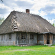 Old rural house with thatched roof — Stock Photo #48902193