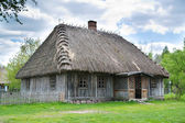 Old rural house with thatched roof — Foto Stock
