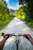 Biking in Alps — Stockfoto