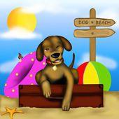 Pes na pláži — Stock fotografie