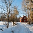 Red painted Swedish wooden house in a wintry landscape — Foto de Stock