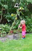 Cute little girl watering plants — Stock Photo