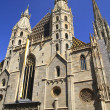 St. Stephen's Cathedral — Stock Photo