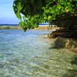 Foto Stock: Tropical beach