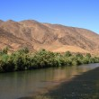 Draa River — Stock Photo #30358761