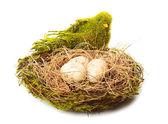 The nest — Foto Stock
