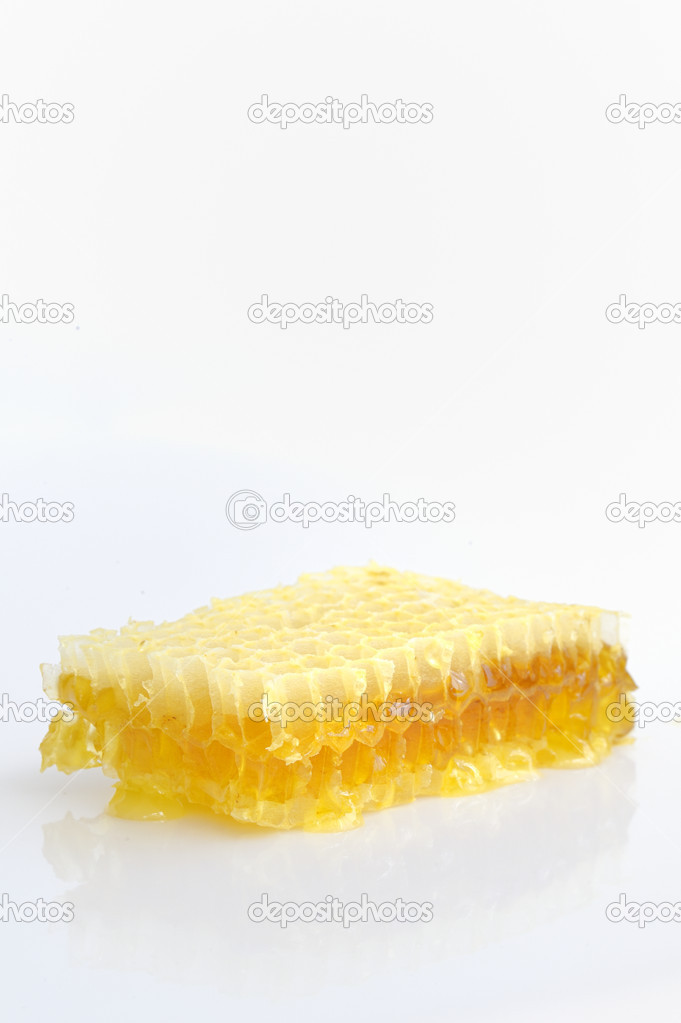 Honeycomb isolated on white background  — Foto de Stock   #12484736