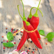 Chili pepper and spices — Stock Photo