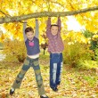 Kids hanging from branch of tree — Stock Photo