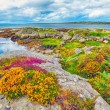 Ireland landscape hdr — Stock Photo