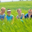 Cousins in wheat field — Stock Photo