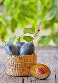 Fresh ripe plums — Stock Photo
