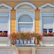 Balcony with flowers pots — Stock Photo #29878015