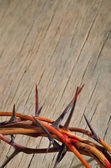 Crown of thorns — Stock Photo