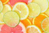 Sliced citrus fruits — Stock Photo