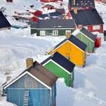 Постер, плакат: Colorful houses in Greenland