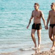Gay couple are holding hand while walking along the beach — Stock Photo #30475885