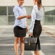 Two Businesswoman are meeting each other — Stock Photo