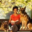 Stock Photo: Womis sitting on bench with two germshepherds