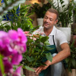 Stock Photo: Florist is taking care of his plants