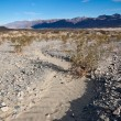 Trail to the Death Valley Sand Dunes — Stock Photo