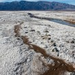 Salt Flats Streams — Stock Photo