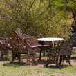 Table with Antique Benches at Mudumalai National Park — Stock Photo