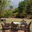 yard at a jungle resort in mudumalai national park — Stock Photo