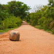 Road in Tropical Resort — Stock Photo #13167896