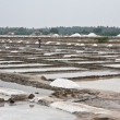 Stock Photo: Saline in India