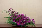 Blumen dekoration — Stockfoto