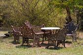 Mudumalai 国立公園でアンティークのベンチとテーブル — ストック写真
