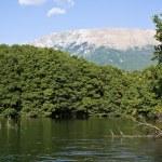 Calm Macedonian River — Stock Photo #13359670
