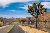 Beautiful drive through the Mojave Desert — Stock Photo