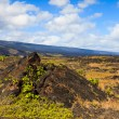 Old LavField in Hawaii — Stock Photo #13958195