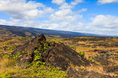 Old Lava Field in Hawaii — Stock Photo