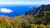 Kalalau Valley Panorama — Stock Photo