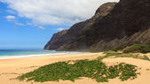 Polihale State Park — Stock Photo