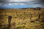 Wiejski krajobraz hawajski — Zdjęcie stockowe