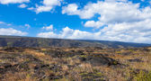 Volcanoes National Park — Stock Photo