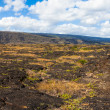 Royalty-Free Stock Photo: Lava Fields Panorama